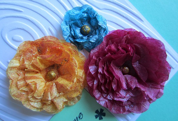 fleurs c c 46