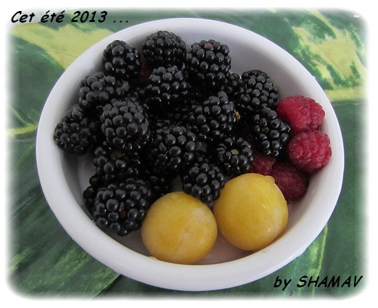 IMG_0044fruits déf