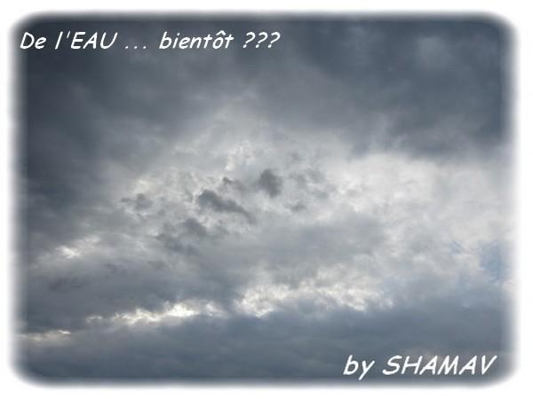 blue EAU 19