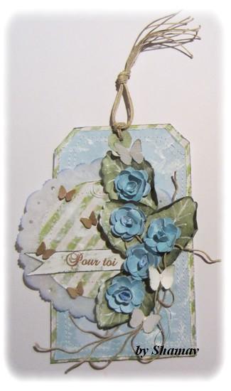 tag bleu