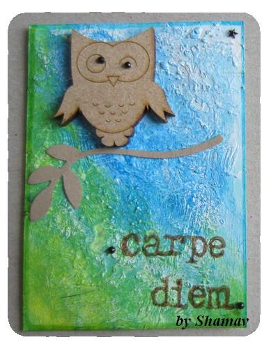 carpe1