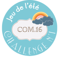 macaron-jeu-ete-2014-challenge-1