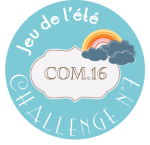 macaron-jeu-ete-2014-challenge-7