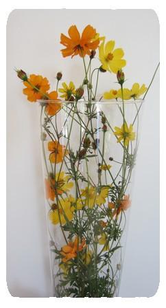 fleurs longues