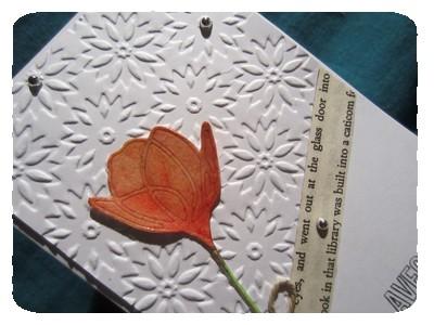 tulipe mary 2